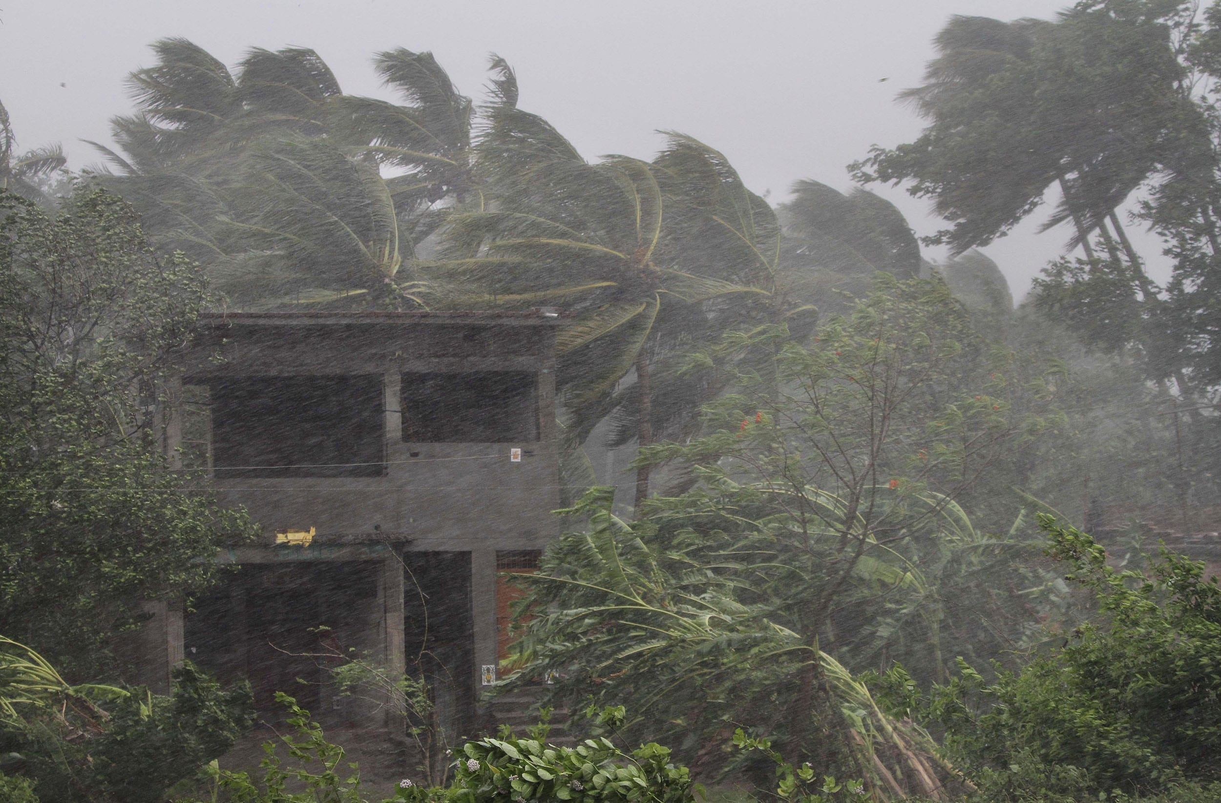 An abandoned house and trees bend with gusty winds ahead off the landfall of cyclone Fani on the outskirts of Puri AP Photo)